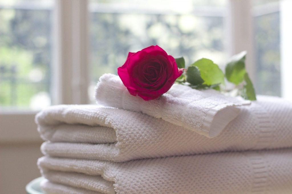 towel, rose, clean